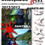 8º curso avançados 2013